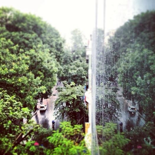 Tháng 8 mưa bão...