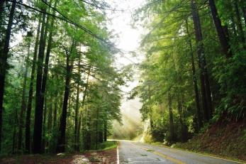 Highway1-31